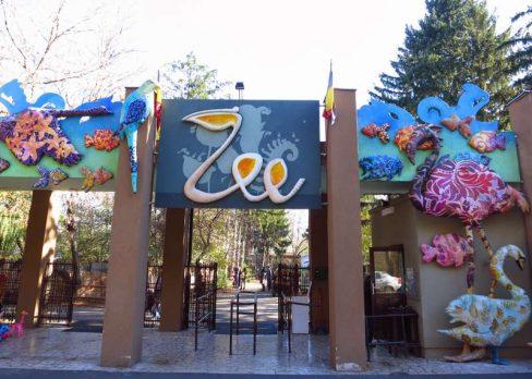 entrada zoo bucarest