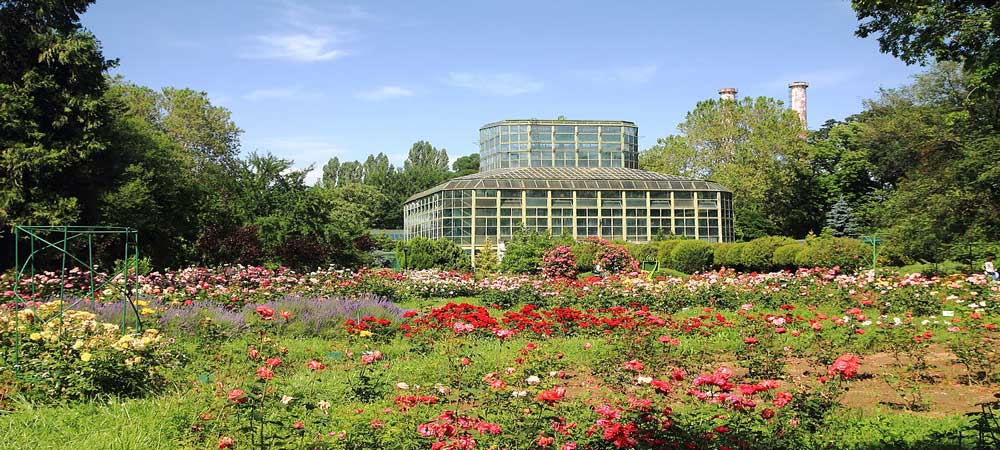 el Jardín botánico de Bucarest