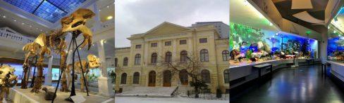 museo grigore antipa