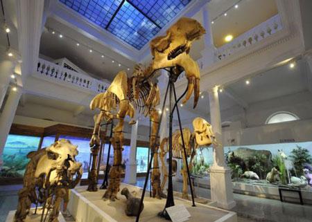museo-interior